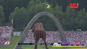 главная достопримечательность трассы формулы 1 в Австрии большой бык Ред Б Булл